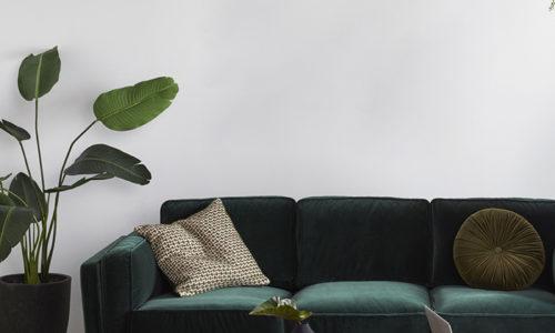 GREEN-VELVET-SOFA-INSPIRATION-Freedom-Daliah-Velvet